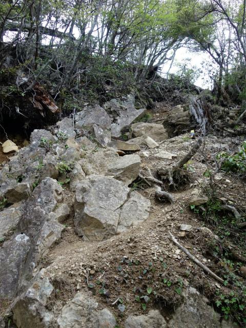 飛龍山(サオラ峠~ミサカ尾根)登山口コースガイド 急登【登山口ナビ】