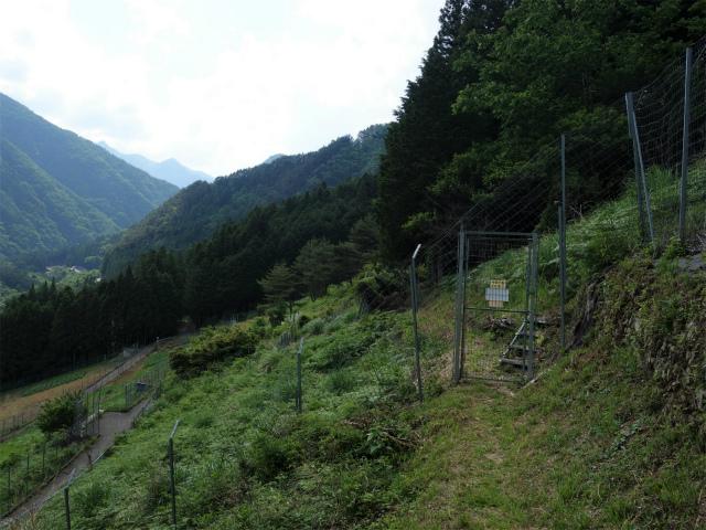飛龍山(サオラ峠~ミサカ尾根)登山口コースガイド 農地横断【登山口ナビ】