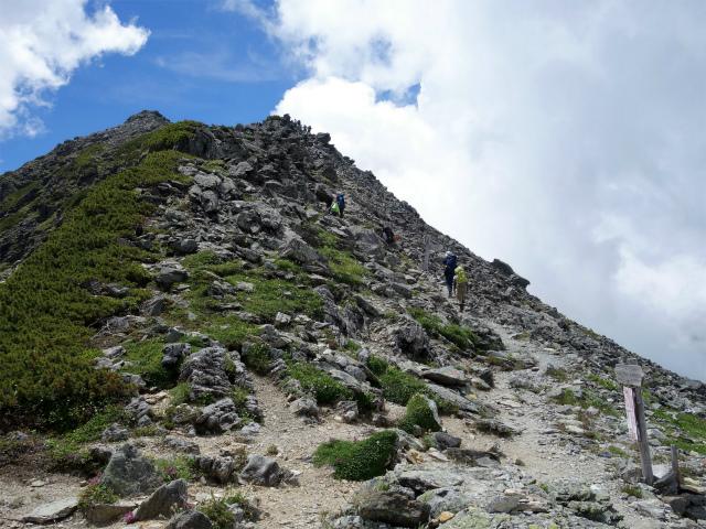 北岳(右俣コース)登山口コースガイド 両俣小屋分岐【登山口ナビ】