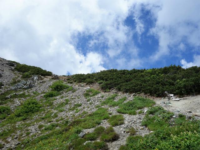 北岳(右俣コース)登山口コースガイド 小太郎尾根分岐【登山口ナビ】