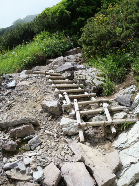 北岳(右俣コース)登山口コースガイド 急登【登山口ナビ】