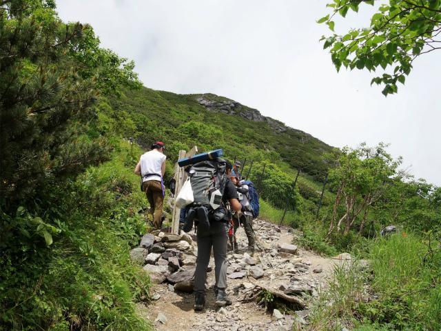 北岳(右俣コース)登山口コースガイド 草スベリコース分岐【登山口ナビ】