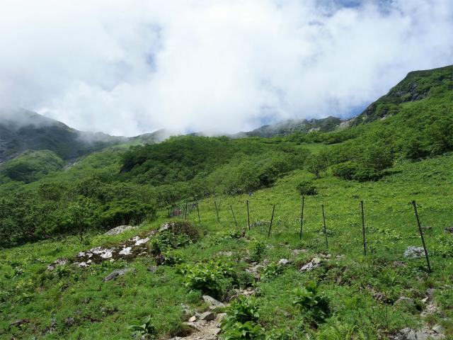 北岳(右俣コース)登山口コースガイド 植生保護柵【登山口ナビ】