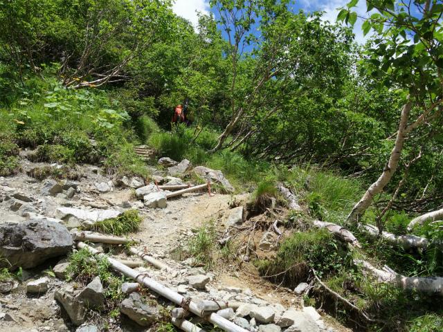 北岳(右俣コース)登山口コースガイド 屈曲点の階段【登山口ナビ】