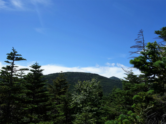 八ヶ岳・中山(麦草峠~白駒池周回)登山口コースガイド 丸山山頂からの中山【登山口ナビ】