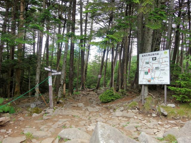 八ヶ岳・中山(麦草峠~白駒池周回)登山口コースガイド 高見石小屋の分岐【登山口ナビ】