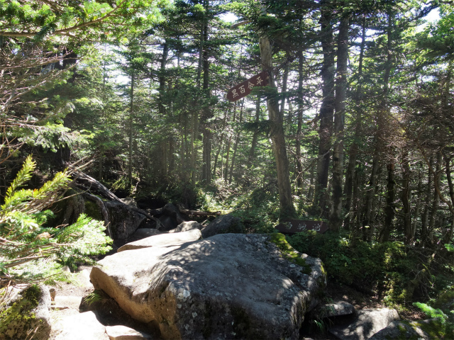八ヶ岳・中山/ニュウ(麦草峠~白駒池周回)登山口コースガイド 屈曲点【登山口ナビ】
