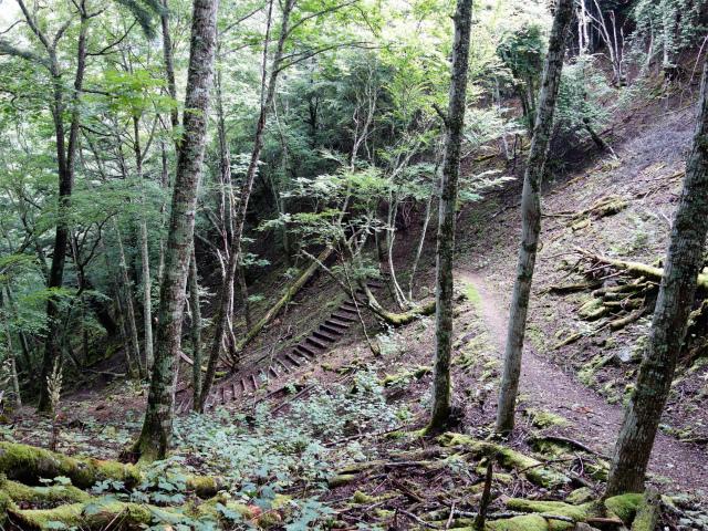 櫛形山(池の茶屋林道口~アヤメ平周回)登山口コースガイド 急坂【登山口ナビ