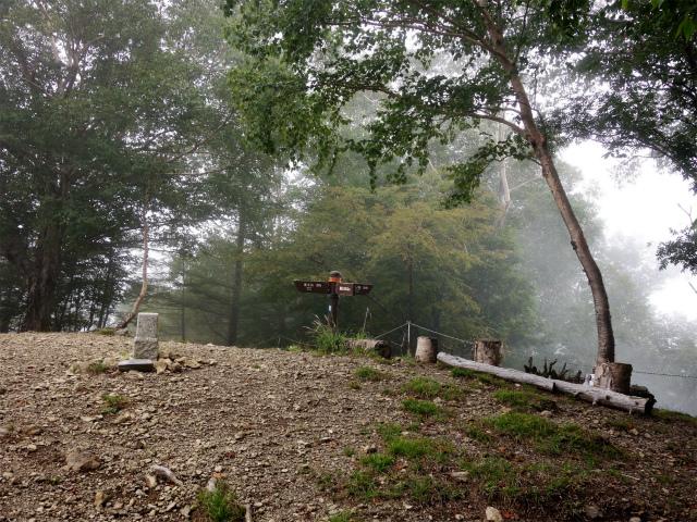 櫛形山(池の茶屋林道口~アヤメ平周回)登山口コースガイド 裸山山頂【登山口ナビ】