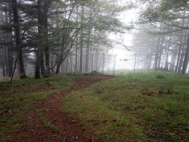 櫛形山(池の茶屋林道口~アヤメ平周回)登山口コースガイド ゲート【登山口ナビ】