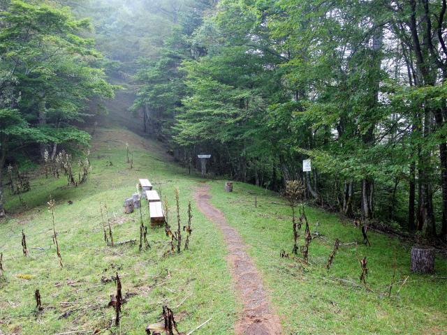 櫛形山(池の茶屋林道口~アヤメ平周回)登山口コースガイド ゲート 屈曲点【登山口ナビ】