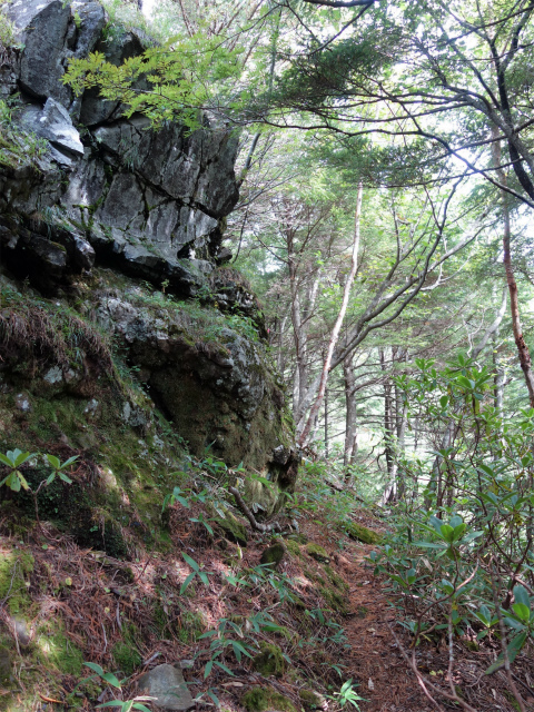 八ヶ岳・赤岳(地獄谷~ツルネ東陵)登山口コースガイド 露岩【登山口ナビ】