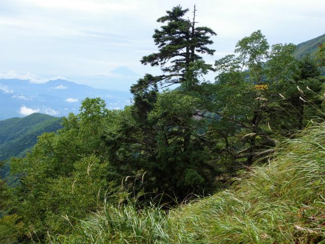 八ヶ岳・赤岳(地獄谷~ツルネ東陵)登山口コースガイド 富士山の眺望【登山口ナビ】