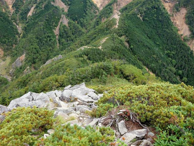 八ヶ岳・赤岳(地獄谷~ツルネ東陵)登山口コースガイド 岩稜の下り【登山口ナビ】