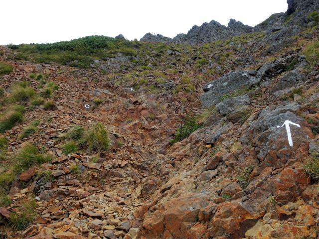 八ヶ岳・赤岳(地獄谷~ツルネ東陵)登山口コースガイド ルンゼ状の急登【登山口ナビ】