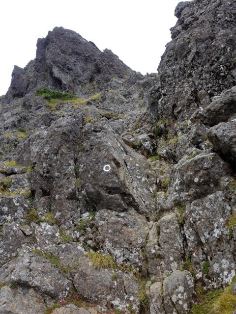 八ヶ岳・赤岳(地獄谷~ツルネ東陵)登山口コースガイド 真教寺尾根分岐直下の急登【登山口ナビ】