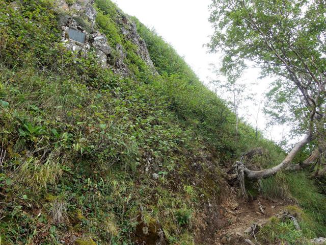 八ヶ岳・権現岳(地獄谷~ツルネ東陵)登山口コースガイド 遭難碑【登山口ナビ】