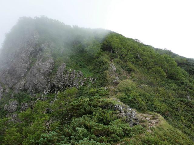 八ヶ岳・権現岳(地獄谷~ツルネ東陵)登山口コースガイド 旭岳【登山口ナビ】