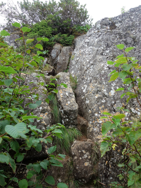 八ヶ岳・権現岳(地獄谷~ツルネ東陵)登山口コースガイド 岩場【登山口ナビ】