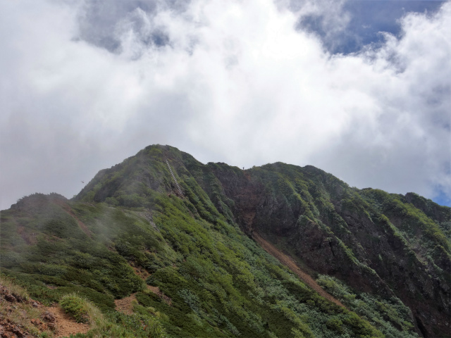 八ヶ岳・権現岳(地獄谷~ツルネ東陵)登山口コースガイド 稜線【登山口ナビ】