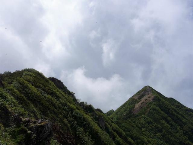 八ヶ岳・権現岳(地獄谷~ツルネ東陵)登山口コースガイド 小ピーク【登山口ナビ】